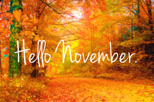 Hello Nov
